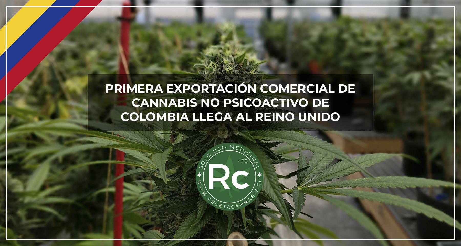 cannabis_colombia_exportacion_inglaterra