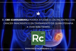 cancer_pancreas_cannabidiol_cannabis_medicinal