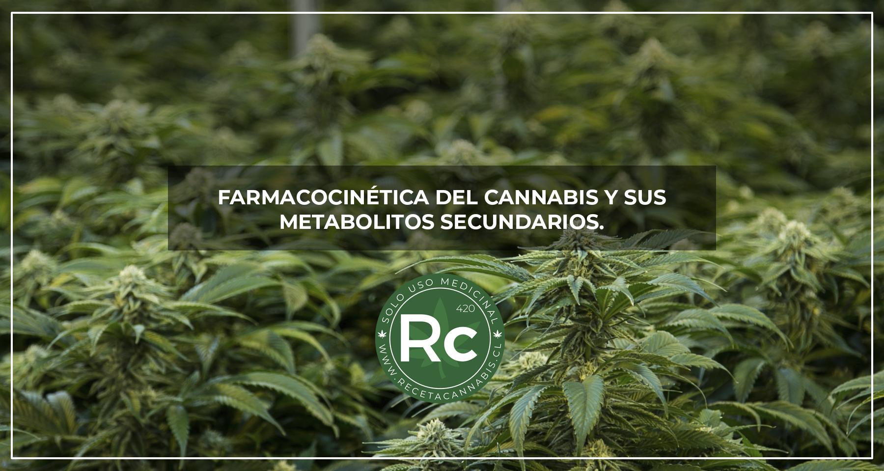 farmacocinetica_del_Cannabis