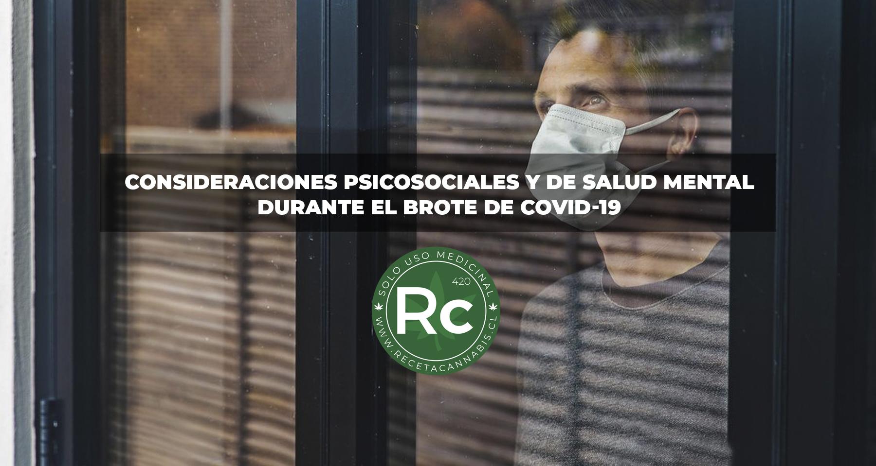 consideraciones_salud_mental_covid19