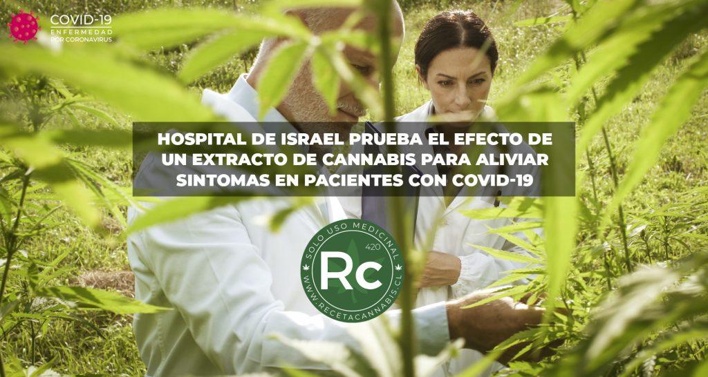 estudio-israel-cannabis-covid19
